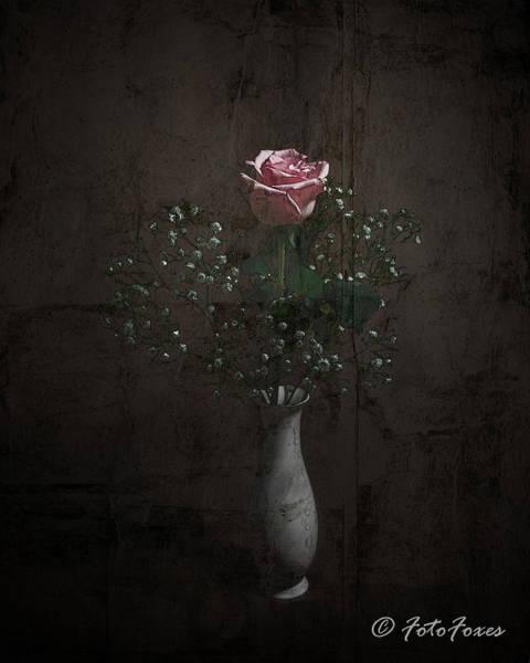 Photograph - Rose by Alexander Fedin