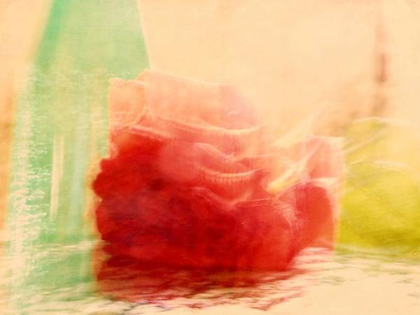 Photograph - Rose And Soda Bottle by Patricia Strand