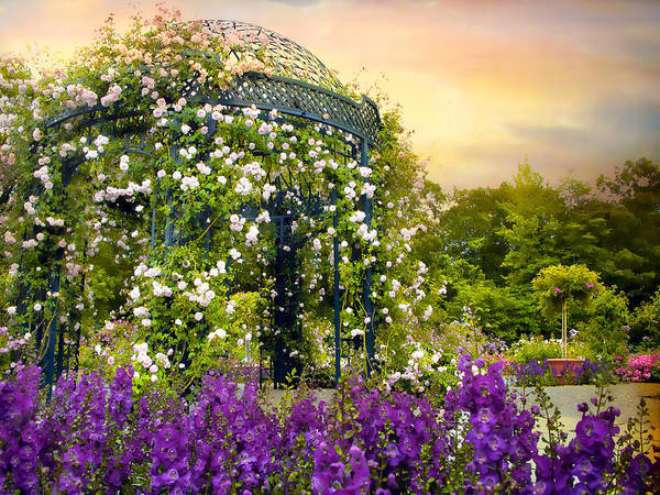 Arbor Photograph - Rose Arbor At Sunset by Jessica Jenney
