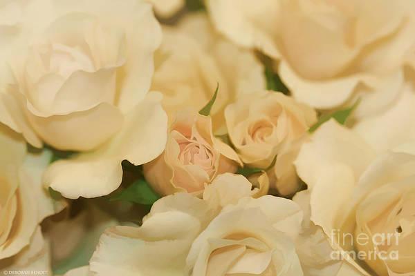Photograph - Rose Bouquet by Deborah Benoit