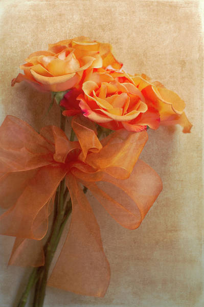 Orange Rose Photograph - Rose Bouquet by Rebecca Cozart