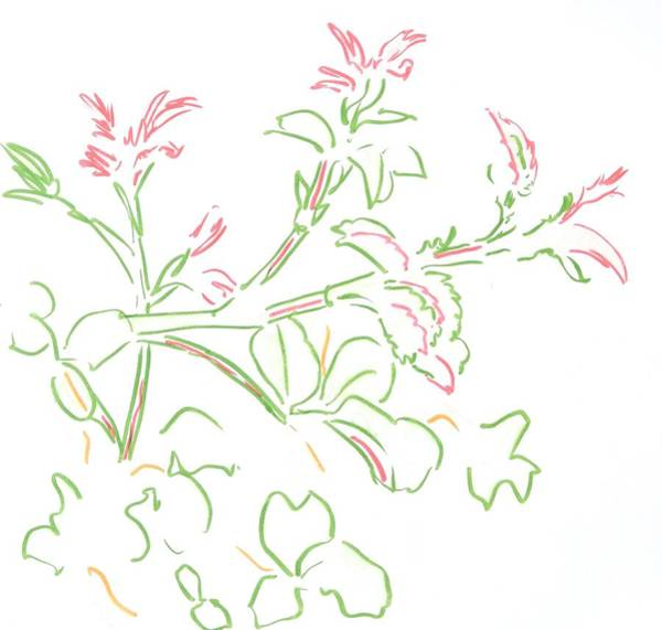 Painting - Rose Buds Illustration by Mike Jory