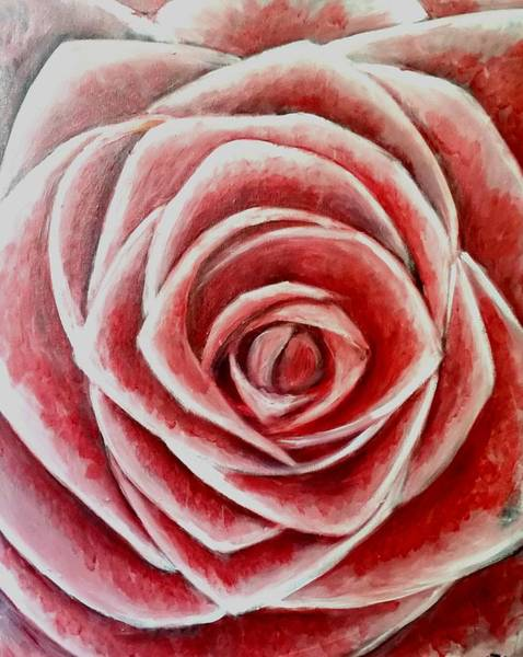 Painting - Rose by Carole Hutchison