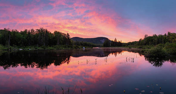 Wall Art - Photograph - Rose-colored Pond - Panorama by Michael Blanchette