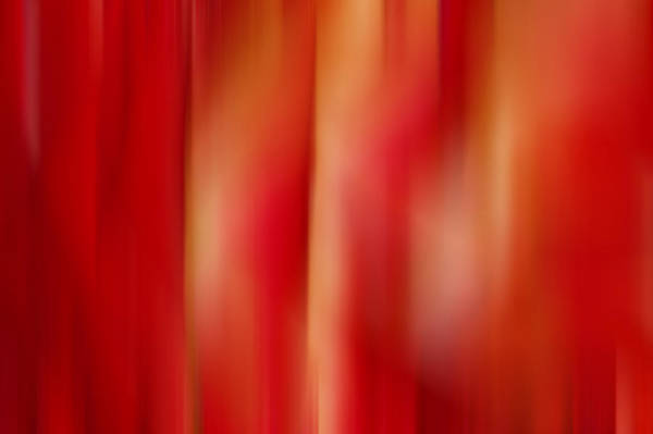 Wall Art - Photograph - Rose Digital Abstracts Motion Blur by Rich Franco