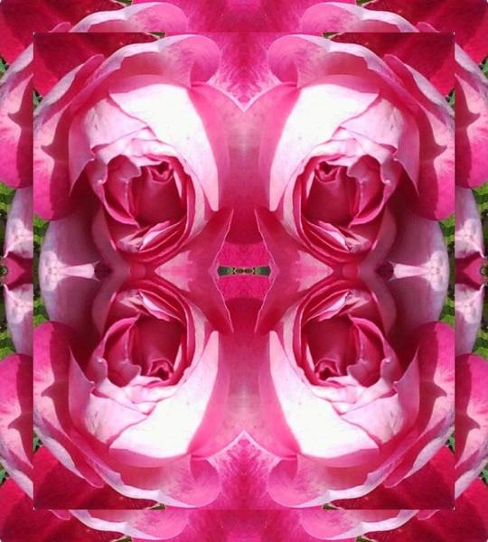 Photograph - Rose Doubled Up Photo Fractal by Julia Woodman
