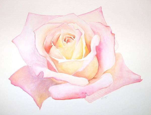 Painting - Rose by Emily Page