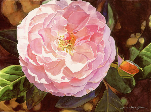 Painting - Rose Fantastique by David Lloyd Glover
