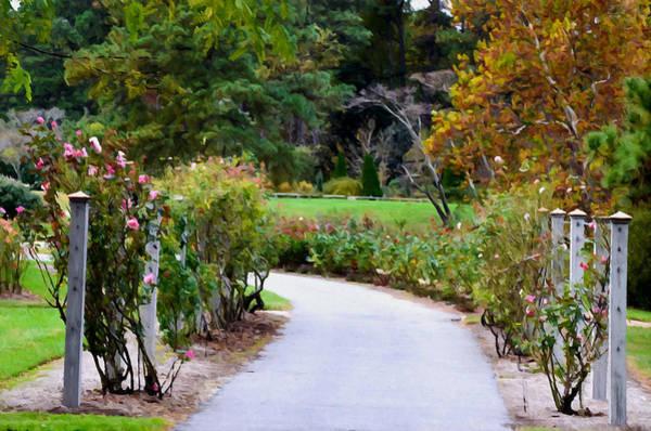 Norfolk Va Wall Art - Painting - Rose Garden 5 by Jeelan Clark