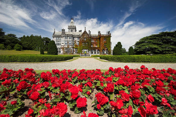 Photograph - Rose Garden Of Adare Manor Ireland by Pierre Leclerc Photography