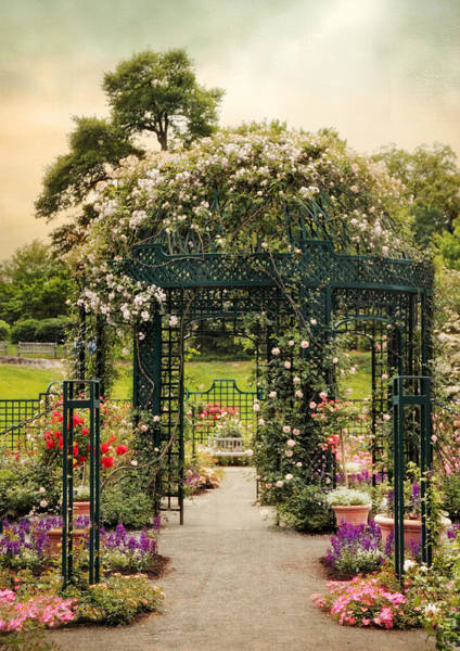 Photograph - Rose Gazebo by Jessica Jenney