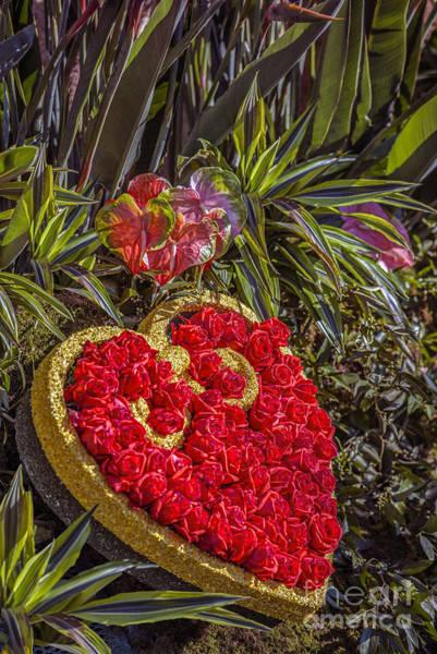 Tournament Of Roses Photograph - The Bachelor Tv Show Inspiring Love by David Zanzinger