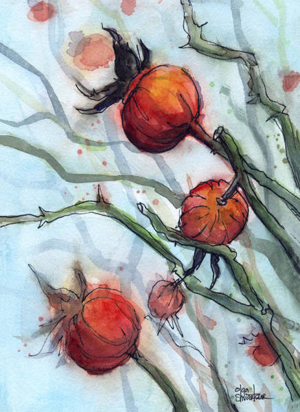 Hip Wall Art - Painting - Rose Hips Abstract  by Olga Shvartsur