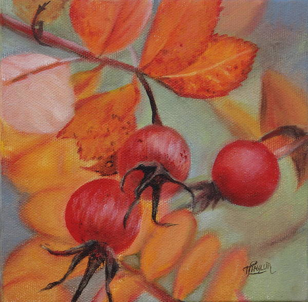 Painting - Rose Hips by Tammy Taylor