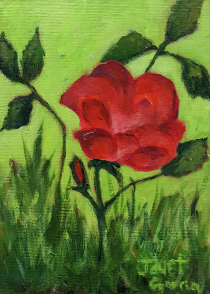 Painting - Rose by Janet Garcia