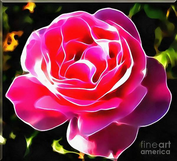 Painting - Rose Lit by Catherine Lott
