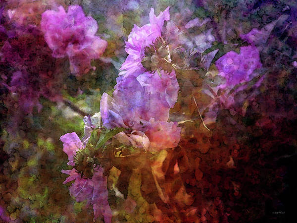 Photograph - Rose Of Sharon Impression 3474 Idp_2 by Steven Ward