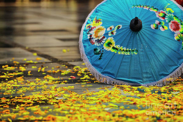 Photograph - Rose Petals And Umbrella At Wat Phrathat Doi Suthep In Chiang Mai, Thailand by Sam Antonio Photography