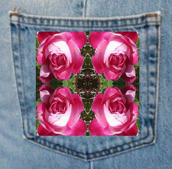 Photograph - Rose Pocket by Julia Woodman