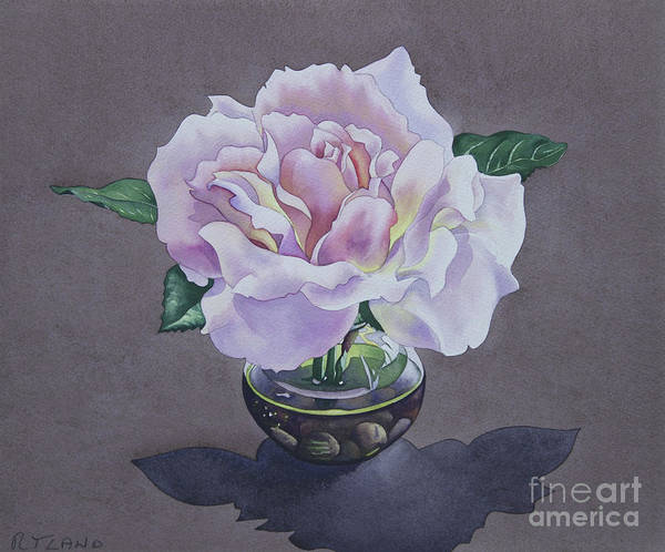 Wall Art - Painting - Rose Portrait by Christopher Ryland