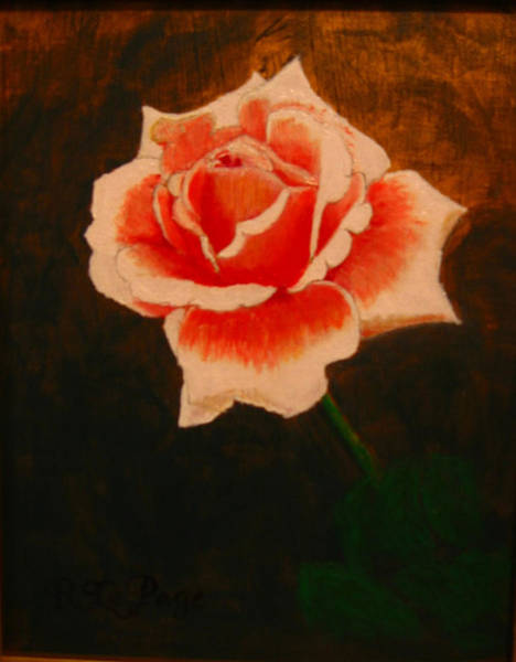 Painting - Rose by Richard Le Page