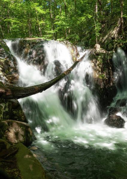 Photograph - Rose River Falls 1 by Lara Ellis
