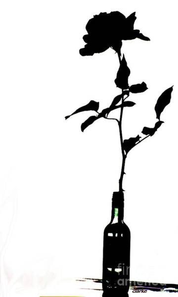 Photograph - Black And White Rose Silhouette by Jean Clarke