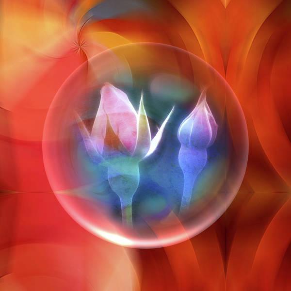 Mixed Media - Rosebowl by Lutz Baar