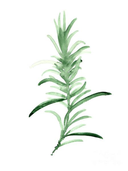 Rosemary Green Watercolor Foodart Art Print