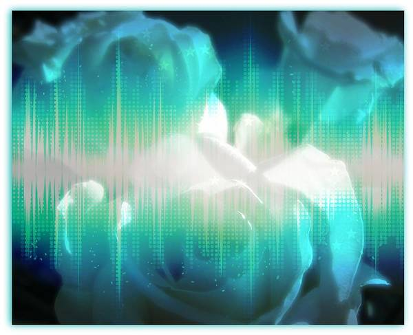 Photograph - Roses #10 by Anne Westlund