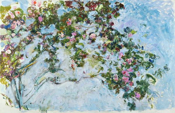 Wall Art - Painting - Roses by Claude Monet