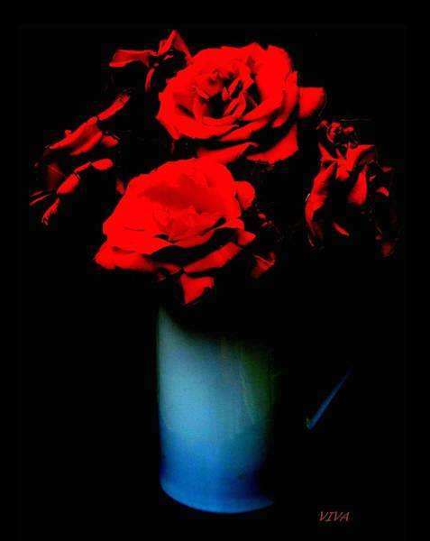 Photograph - Roses From Jane by VIVA Anderson