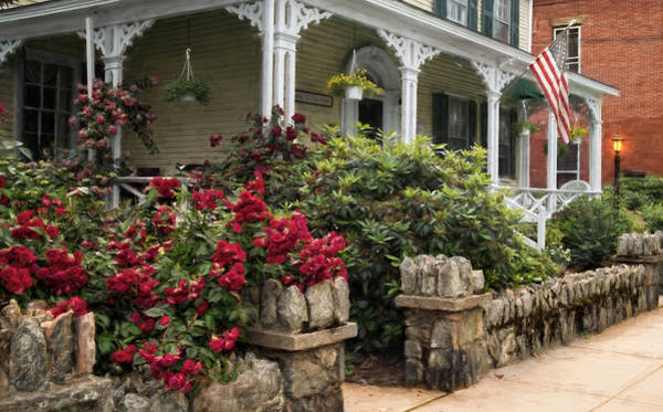 Photograph - Roses On Hope Street by Robin-Lee Vieira