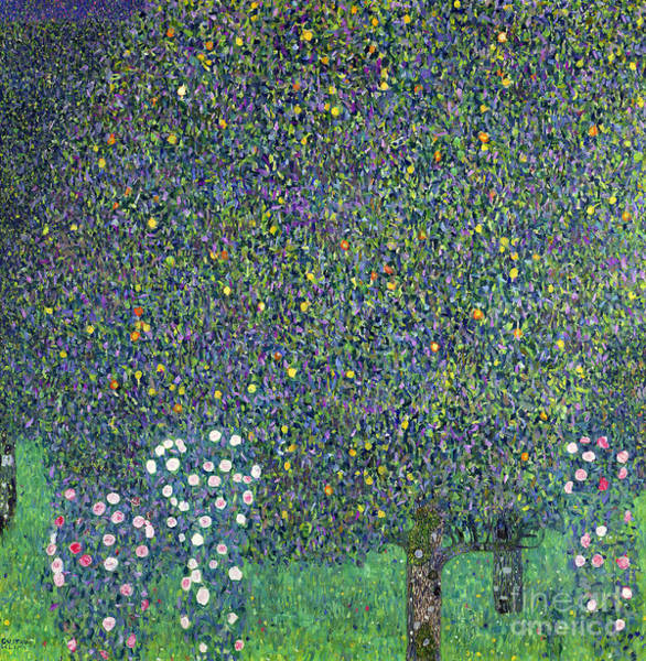 Gustav Klimt Painting - Roses Under The Trees by Gustav Klimt