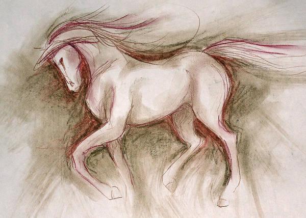 Warmbloods Drawing - Rosie by Jennifer Fosgate