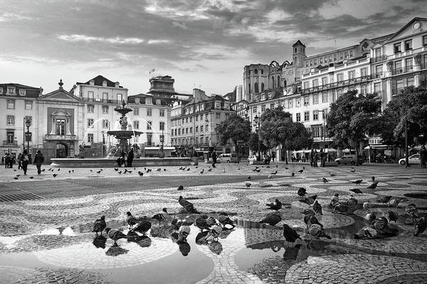 Town Square Wall Art - Photograph - Rossio Square In Downtown Lisbon by Carlos Caetano