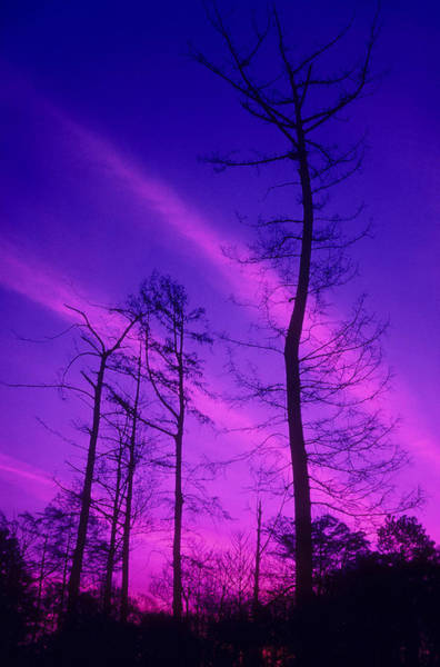 Wall Art - Photograph - Rosy Fingers Of Dawn by Gerard Fritz