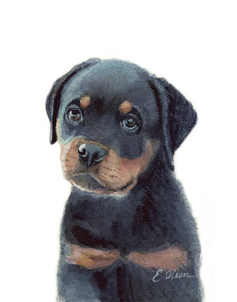 Rottweiler Painting - Rottweiler Pup by Emily Olson