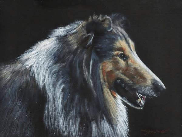 Painting - Rough Collie by John Neeve