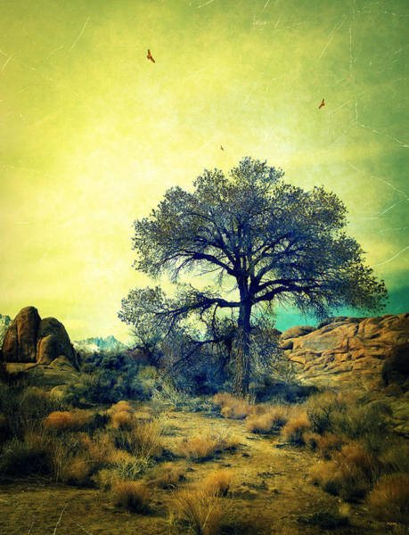 Rough Terrain Art Print