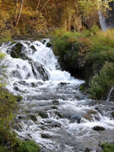 Photograph - Roughlock Falls by Rich Stedman