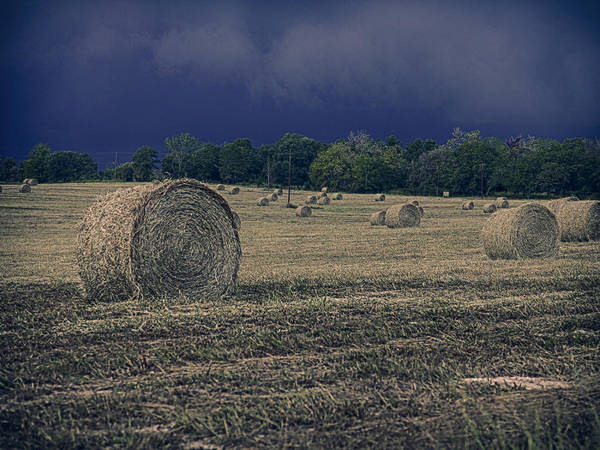 Photograph - Round Bails In Field by Charles McKelroy