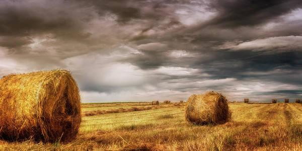Wall Art - Photograph - Round Bales by Adrian Malanca