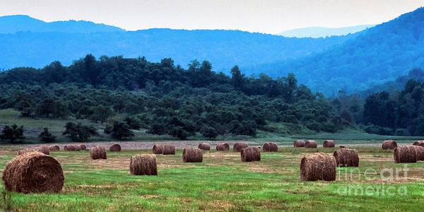 Photograph - Round Hay Bales, Virginia by Thomas R Fletcher