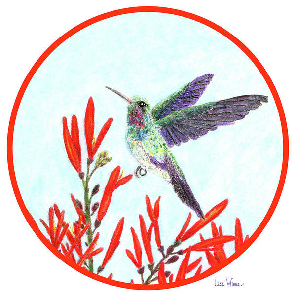 Painting - Round Hummingbird In Opening by Lise Winne