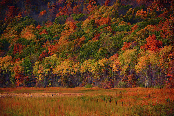Photograph - Round Valley State Park 2 by Raymond Salani III