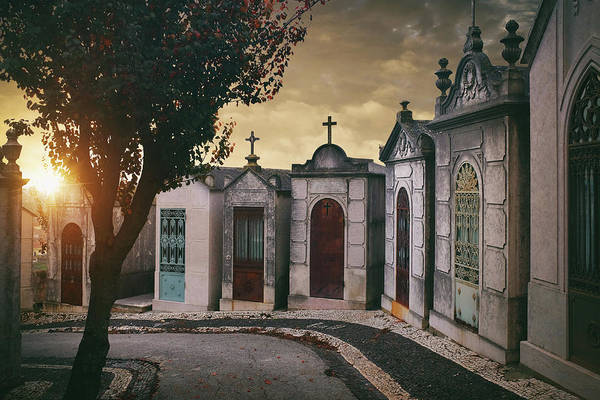 Crypt Photograph - Row Of Crypts by Carlos Caetano