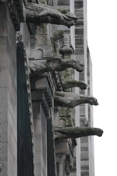Photograph - Row Of Gargoyles by Christopher Kirby