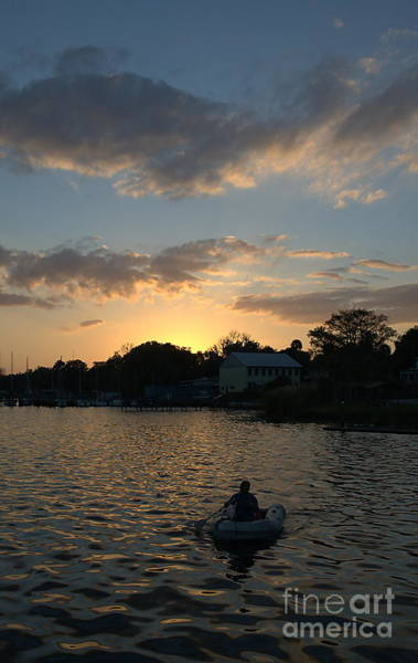 Photograph - Rowing In by Kathi Shotwell