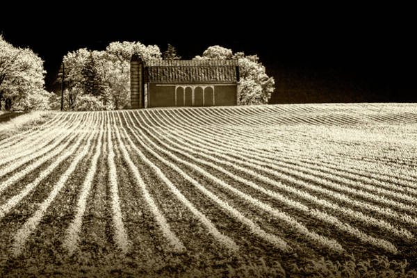 Photograph - Rows In A Farm Field With Barn And Silo In Infrared Sepia Tone by Randall Nyhof